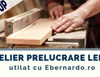 StartUp Nation - atelier prelucrare lemn utilat cu Ebernardo.ro